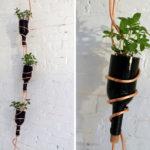¡Macetas colgantes! Original forma de renovar el jardín con material reciclable