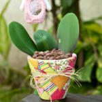 ¡Felicidad de primavera! Decore su maceta con distintas telas y colores!