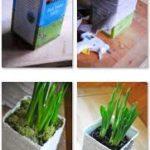 ¿Cómo hacer macetas con cajas de cartón recicladas?