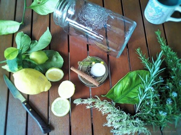 tarros-velas-flotantes-repelente-natural-mosquitos-1